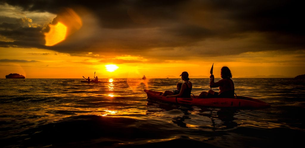 Night Kayaking Tours
